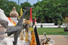 Cisne, Muang, Tailandia Imagen de archivo