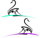 Cisnes Imagens de Stock Royalty Free
