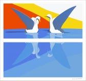 Cisnes da vida Ilustração do Vetor