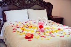 Cisnes de la toalla del blanco dos y rosa del rojo en la cama en traje de la luna de la miel Foto de archivo