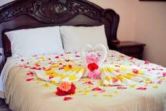 Cisnes de la toalla del blanco dos y rosa del rojo en la cama en traje de la luna de la miel Imagen de archivo libre de regalías