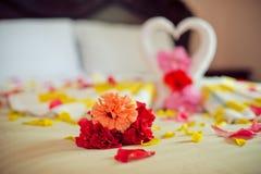 Cisnes de la toalla del blanco dos y rosa del rojo en la cama en traje de la luna de la miel Fotos de archivo libres de regalías