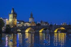 Cisnes de Praga Foto de archivo
