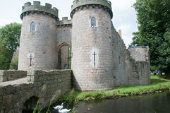 Cisnes e castelo Fotos de Stock Royalty Free