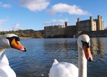 Cisnes e castelo Imagens de Stock Royalty Free
