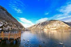Cisnes e patos selvagens que nadam perto da pera no lago Hallstatt, Áustria Imagens de Stock Royalty Free