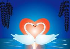 Cisnes em um lago ilustração royalty free