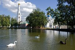 Cisnes em um monastério Foto de Stock Royalty Free