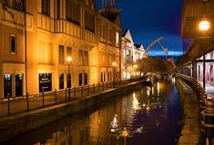 Cisnes en el canal viejo de la ciudad de Lincoln, por luz artificial fotos de archivo