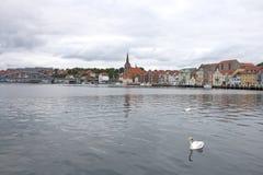 Cisnes en el puerto Fotos de archivo libres de regalías