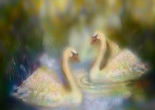 Cisnes graciosas no amor que nadam junto, colagem da ilustração ilustração do vetor
