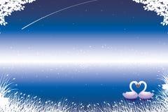 Cisnes Loving ilustração stock