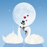 Cisnes no amor na lua ilustração royalty free