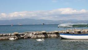 Cisnes no lago Ohrid filme