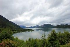 Cisnes sjö, Patagonia, Chile Arkivfoto