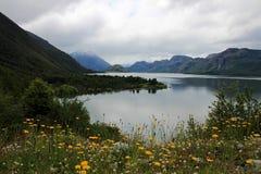 Cisnes sjö, Patagonia, Chile Arkivbilder