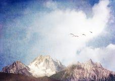 Cisnes y montañas Imagen de archivo libre de regalías