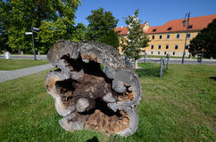 Cistercian Abbey in Rudy. Near Raciborz in Poland Stock Image