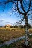 Cistercian Abtei von San Galgano nahe Chiusdino, Toskana, Italien Stockbild
