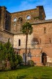 Cistercian Abtei von San Galgano nahe Chiusdino, Toskana, Italien Stockbilder