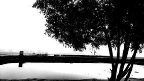 Cisza z pięknem obraz stock