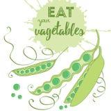 Citações do alimento Coma seus vegetais Produto orgânico saudável ilustração royalty free