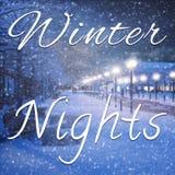 Citações românticas das noites da decoração e do inverno ilustração do vetor