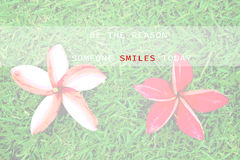 Cita inspirada - sea la razón que sonríe alguien hoy fotos de archivo libres de regalías