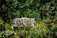 Cita secreta Banco vacío aislado en un jardín del país imágenes de archivo libres de regalías