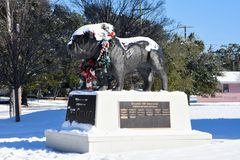 Citadel Bulldog Statue outside Johnson-Hagood Stadium. The Citadel mascot is covered in a fresh batch of snow as a rare winter storm dropped six inches of snow Stock Photo
