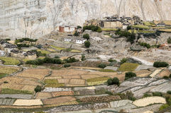 Citadel and monastery of Tetang village in Mustang. Crops, homes and monastery of Tetang at fall. Warm colors:  ocher, green and brown Stock Image