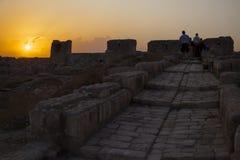 Citadel van Aleppo - Syrië Stock Fotografie