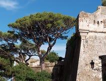 Citadel van Bastia stock foto