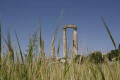 Citadelle à Amman Photographie stock