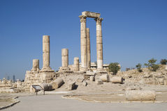 Citadelle d'Amman, Jordanie Images stock