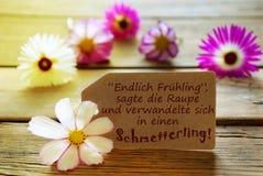 Citation de Sunny Label With German Life avec des fleurs de Cosmea Image libre de droits
