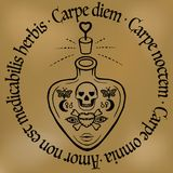 Citation inspirée vecteur de bouteille de philtre d'amour de tatouage carpe diem, d'ensemble ou de poison avec des symboles ésoté illustration stock