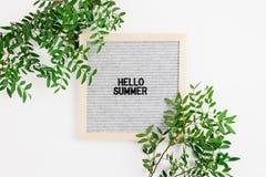 Citationstecken - Hello sommar Gränsram som göras av pistaschfilialer fotografering för bildbyråer