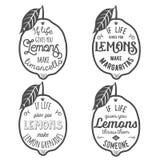 Citazione di motivazione circa i limoni Fotografia Stock Libera da Diritti