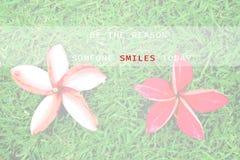 Citazione ispiratrice - sia la ragione che qualcuno sorride oggi Fotografie Stock Libere da Diritti