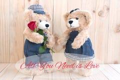 Cite todos lo que usted necesita es amor con el oso de peluche de los pares Foto de archivo