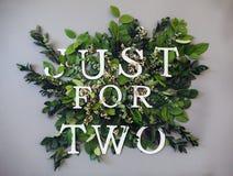 Citi, appena per due, scritto sopra fra le foglie del euqalyptus Buon fondo Fotografia Stock