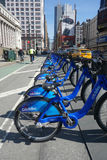 Citi Bikes Royalty Free Stock Photography