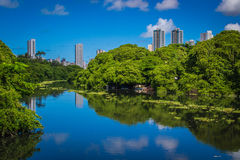 Cities of Brasil - Recife. Park and pier Jaqueira the Capibaribe River in Recife, the state capital of Pernambuco, in northeastern Brazil Stock Images