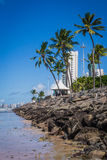 Cities of Brazil - Recife Royalty Free Stock Photo