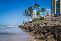 Cities of Brazil - Recife. Recife, the state capital of Pernambuco, in northeastern Brazil, has one of the longest urban beaches in the world: the Boa Viagem royalty free stock images