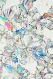 Citir saure Kristalle Makro Lizenzfreies Stockbild