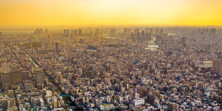 Citiscape of Tokyo, Japan Royalty Free Stock Photo