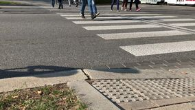 Citizens cross road by zebra crossing near public transport. In sunny autumn day. Pedestrian foot thwart the road by crosswalk. Unrecognisable people step stock video