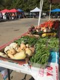 Citizens shopping at outdoor farmer market TX. Citizens shopping at outdoor farmer market, Frisco TX USA stock images